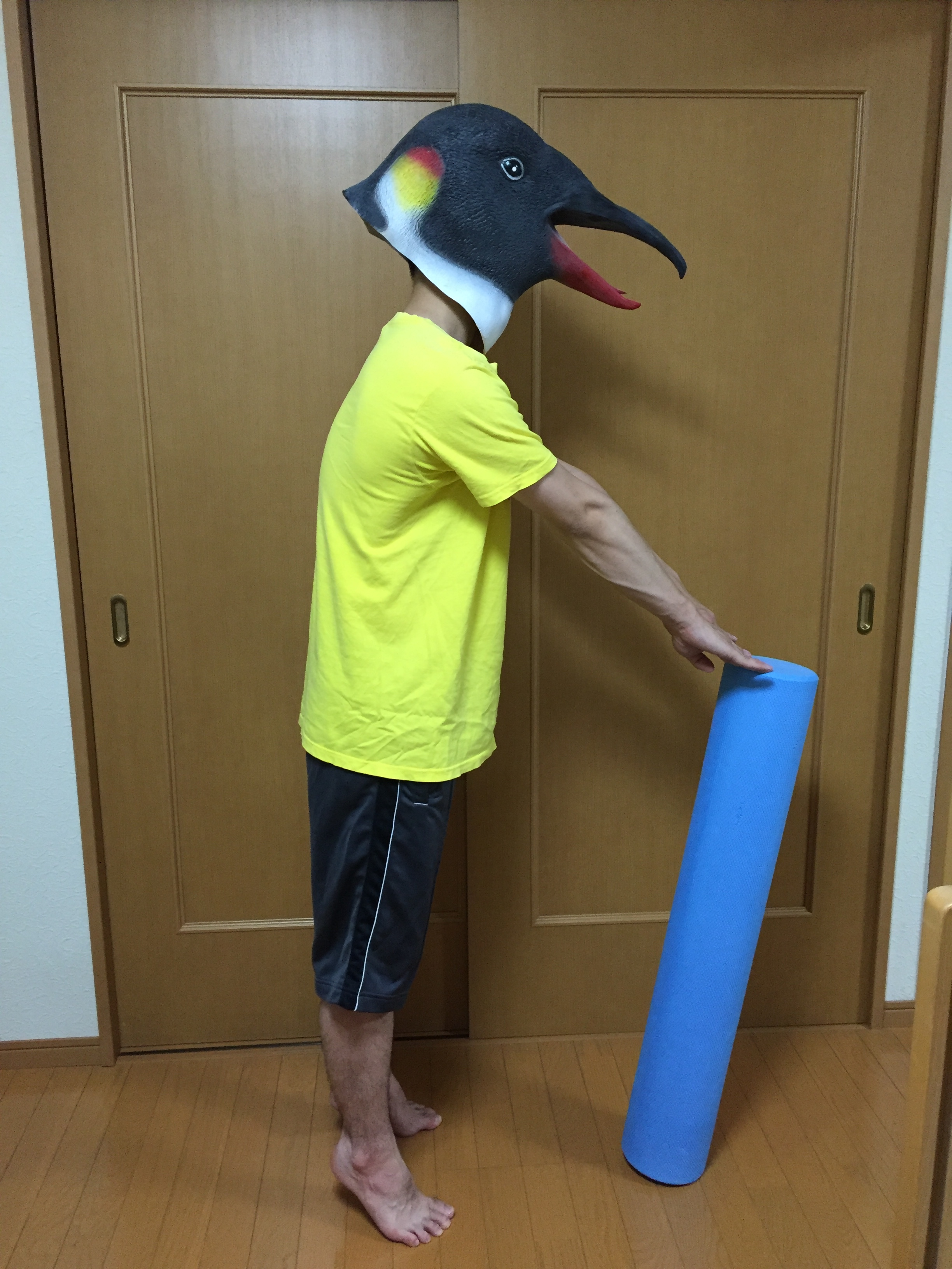 肩甲骨とバランス練習の備忘録